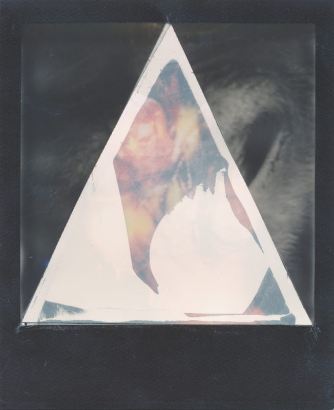 Mads Madison - Wasted Films - Manipulated Analog Polaroid